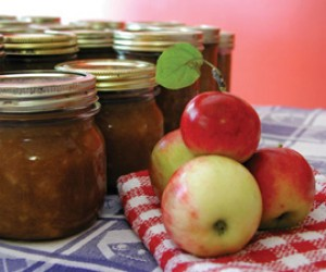 Nanny Wile's Apple Chow